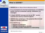 what is goose