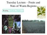 tuesday lecture fruits and nuts of warm regions