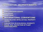 intelluctual property rights