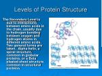 levels of protein structure34