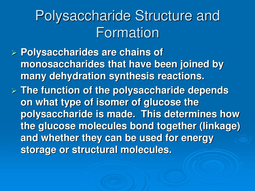 Polysaccharide Structure and Formation