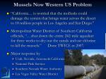 mussels now western us problem5