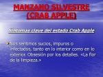 manzano silvestre crab apple