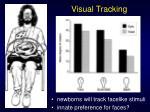 visual tracking