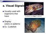 a visual signals