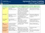 agronomic factors limiting corn crop potential