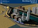 biorefining depends on feedstock