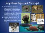 keystone species concept