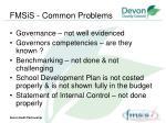 fmsis common problems