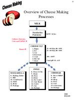 overview of cheese making processes20