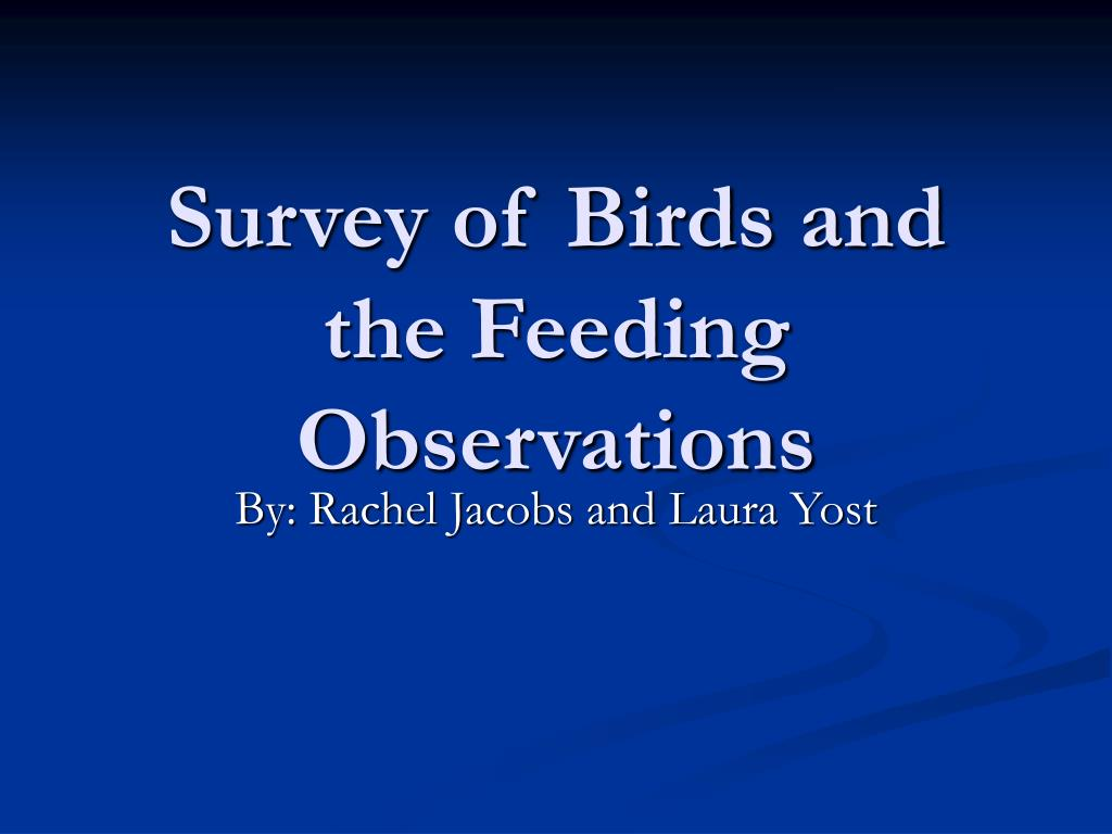 survey of birds and the feeding observations l.