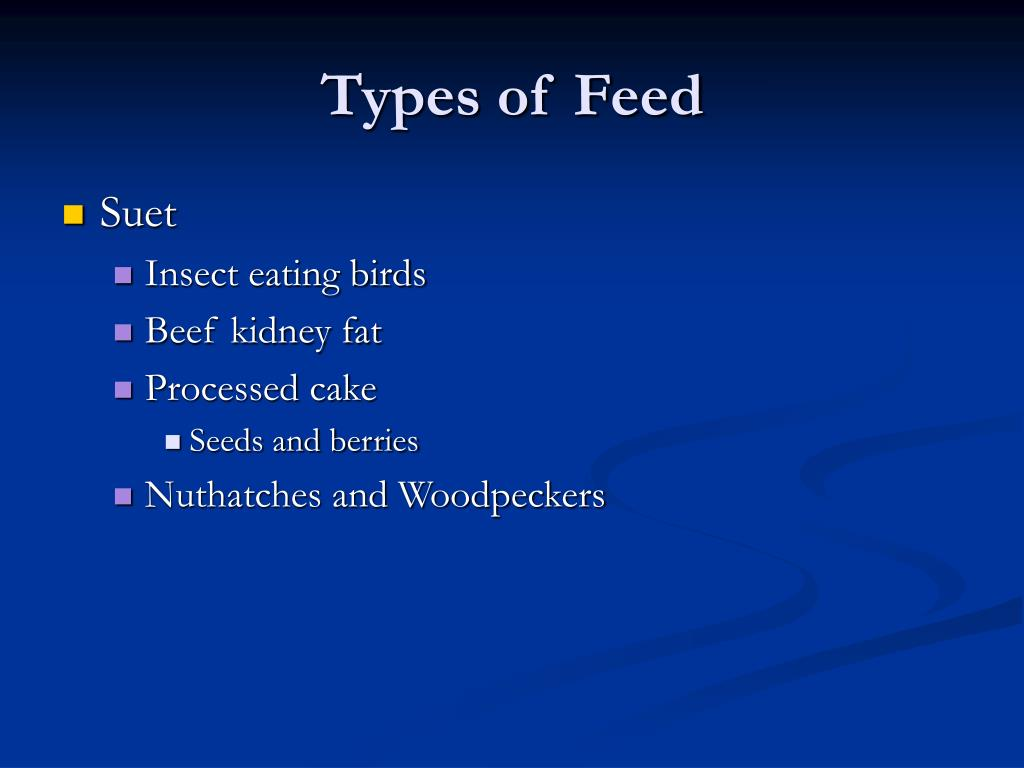 Types of Feed