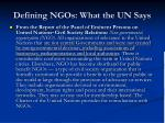 defining ngos what the un says5