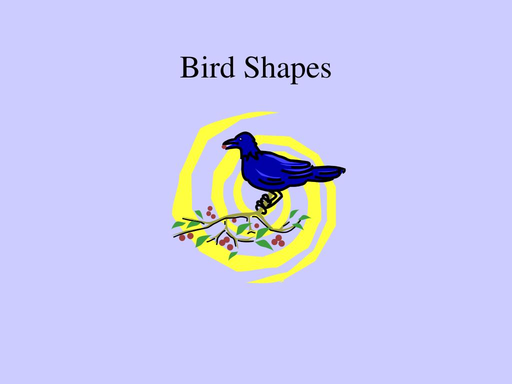 bird shapes l.