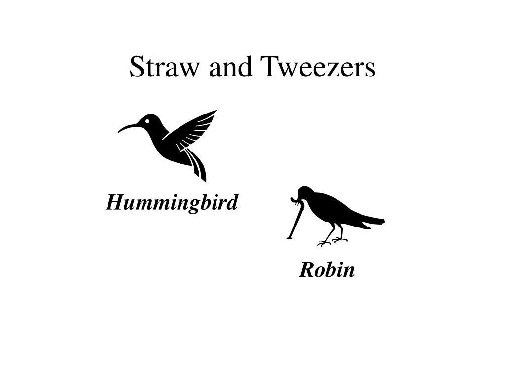 Straw and Tweezers