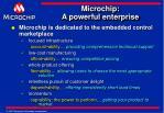 microchip a powerful enterprise