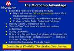 the microchip advantage