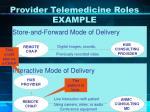 provider telemedicine roles example