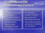 crowd dynamics situational factors