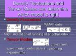 density fluctuations and tensor modes