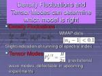 density fluctuations and tensor modes1
