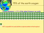 75 of the earth oxygen