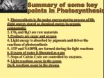 summary of some key points in photosynthesis