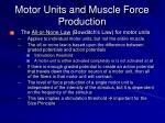 motor units and muscle force production