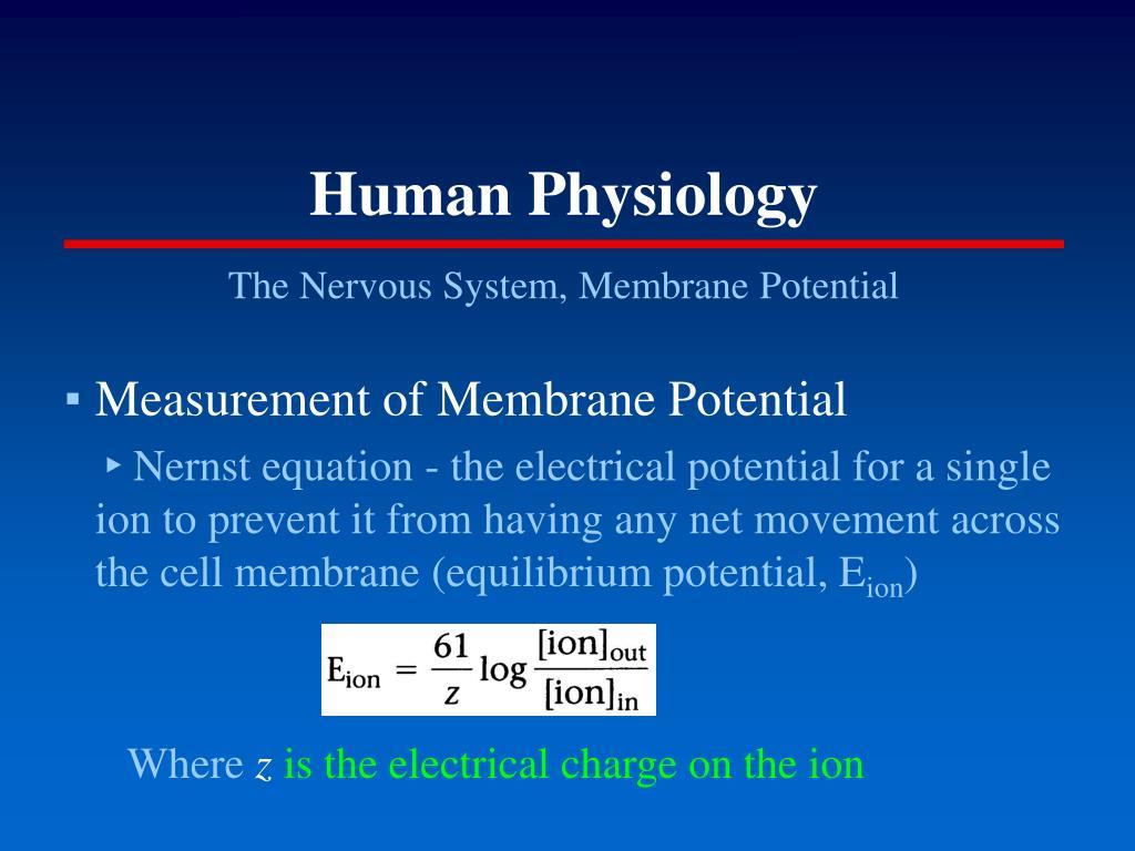 human physiology l.