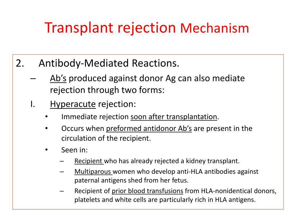 transplantation immunology essay