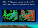 wrf nmm forecast plotted with gempak precipitation and derived radar reflectivity