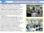 how toastmasters works