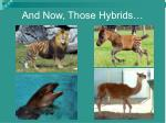 and now those hybrids