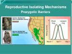 reproductive isolating mechanisms