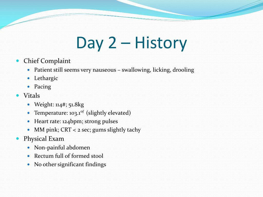 Day 2 – History