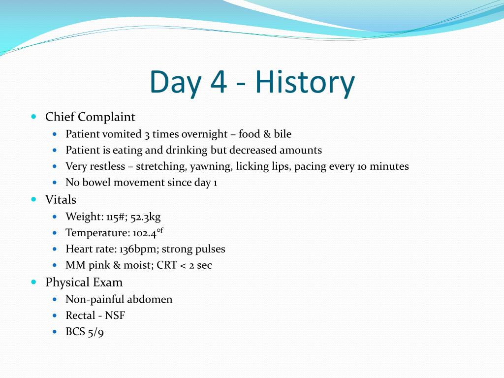 Day 4 - History