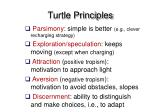 turtle principles