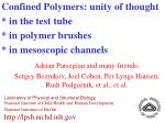confined polymers unity of thought in the test tube in polymer brushes in mesoscopic channels