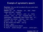 example of agrammatic speech