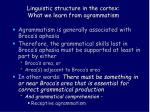 linguistic structure in the cortex what we learn from agrammatism