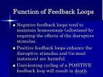 function of feedback loops