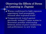 observing the effects of stress on learning in dugesia