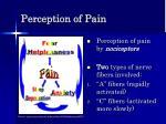 perception of pain