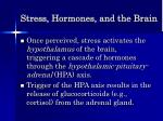 stress hormones and the brain