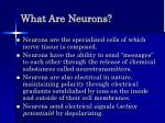 what are neurons