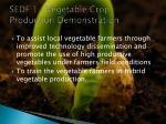 sedf 1 vegetable crop production demonstration