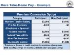 more take home pay example