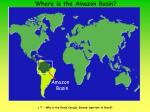 where is the amazon basin