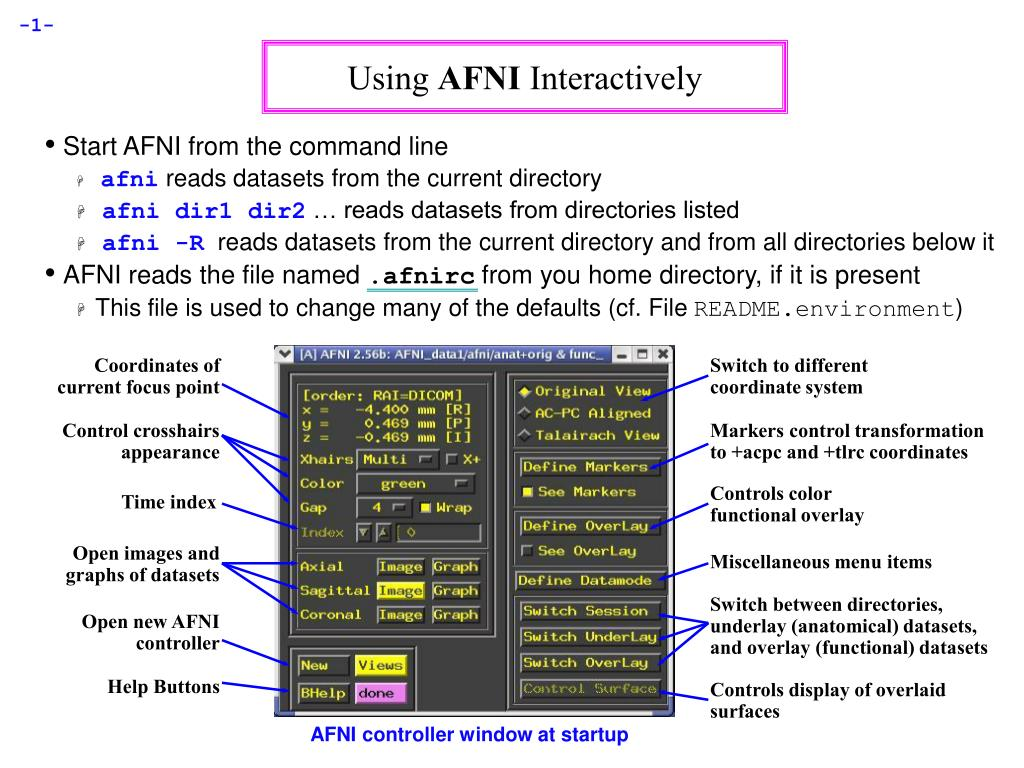 using afni interactively l.