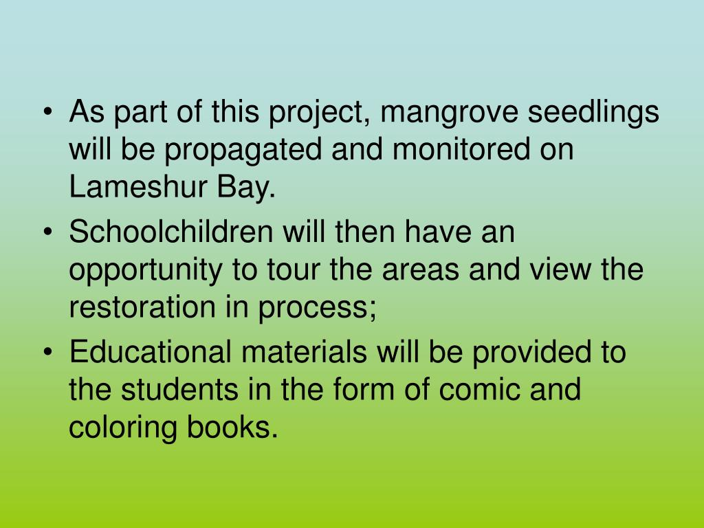 As part of this project, mangrove seedlings will be propagated and monitored on Lameshur Bay.